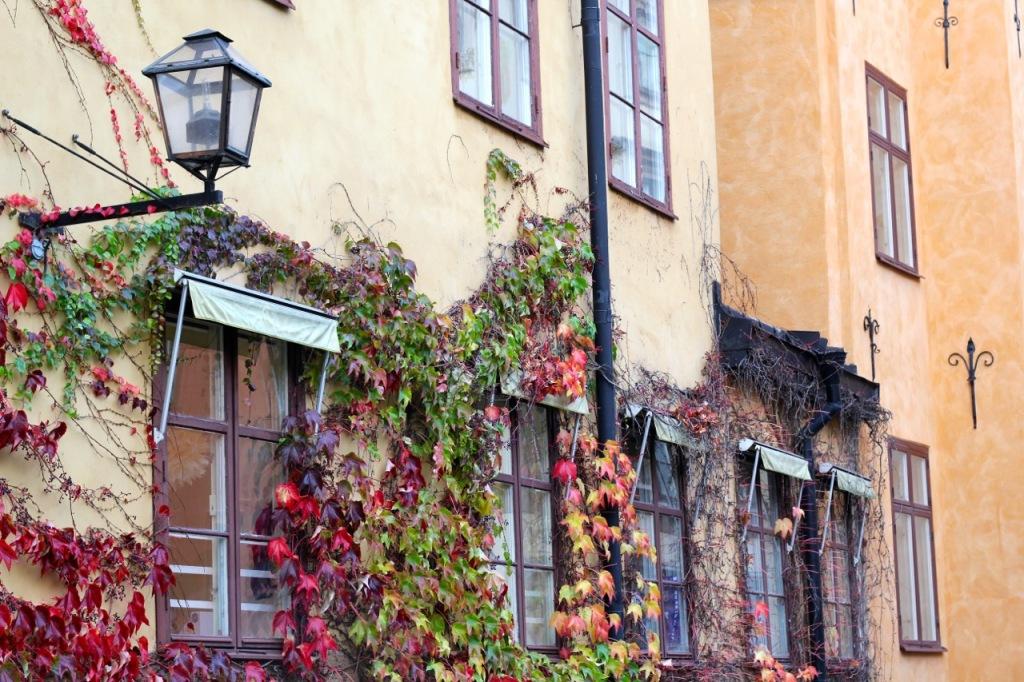 Stockholm fotog