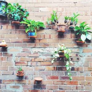Sydney_14-20 February 2015_068