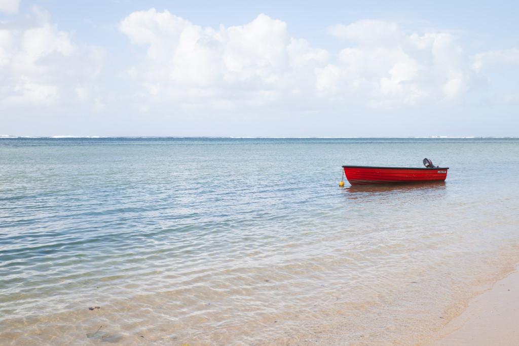 Mauritius0973
