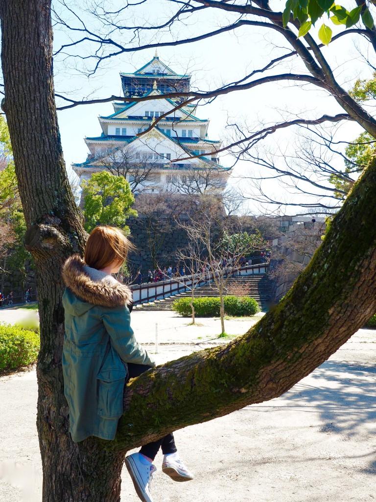 Castillo de Osaka | Mundo de pasión por los viajes