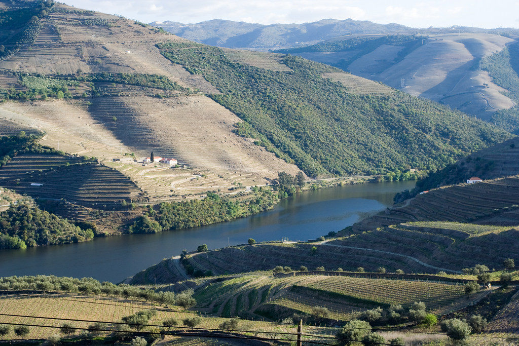 Douro_Valley_Portugal