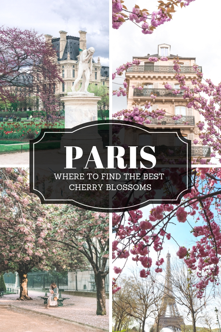 The best cherry blossoms in Paris | WORLD OF WANDERLUST