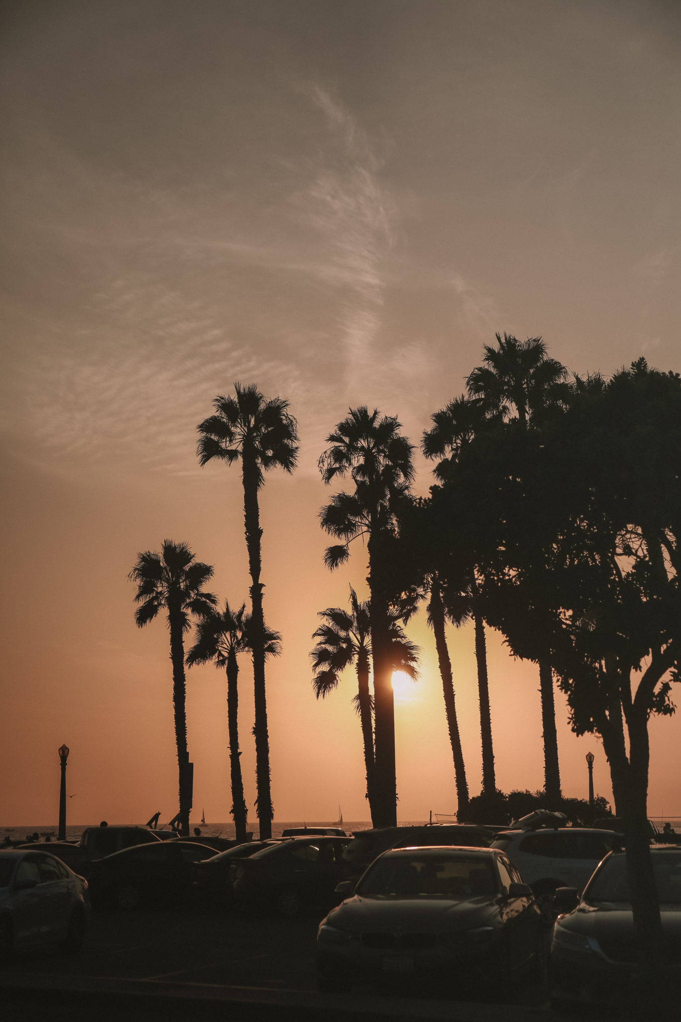 Guide to Venice California | WORLD OF WANDERLUST