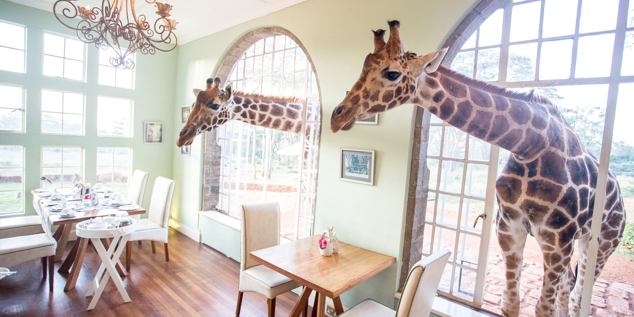 Giraffe Manor Kenya | WORLD OF WANDERLUST
