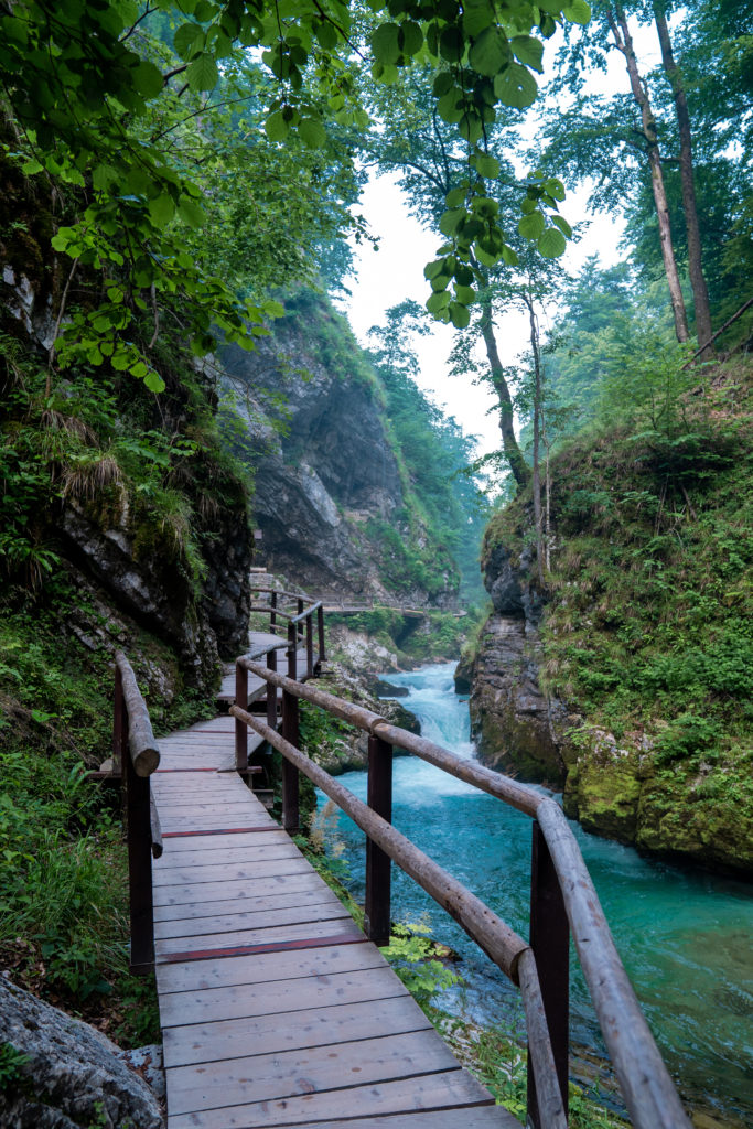 Vintgar Gorge Slovenia | World of Wanderlust