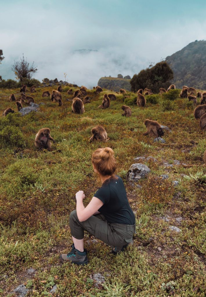 Simien Mountains guide   WORLD OF WANDERLUST