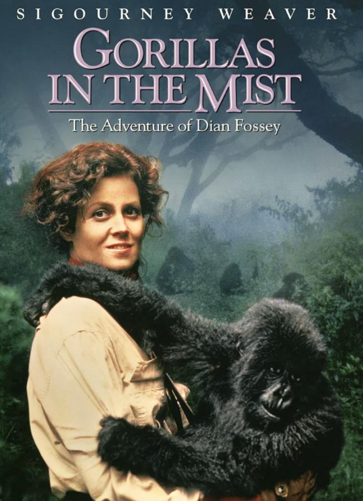Gorilas en la niebla | Las mejores películas ambientadas en África