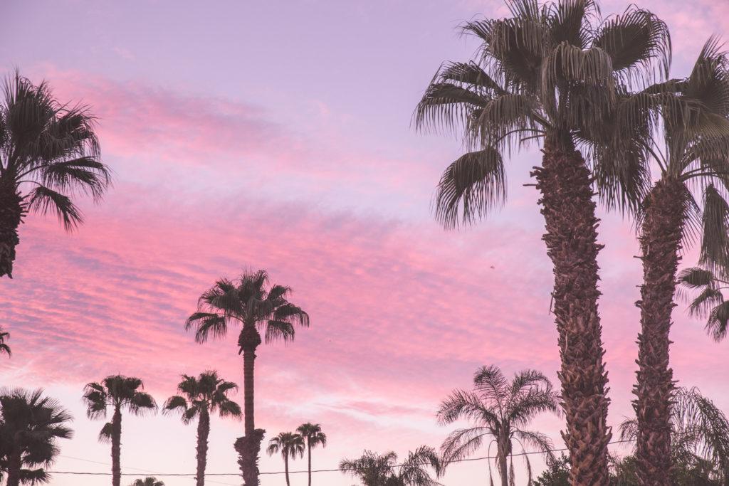 Palm Springs en Californie |  World of Wanderlust