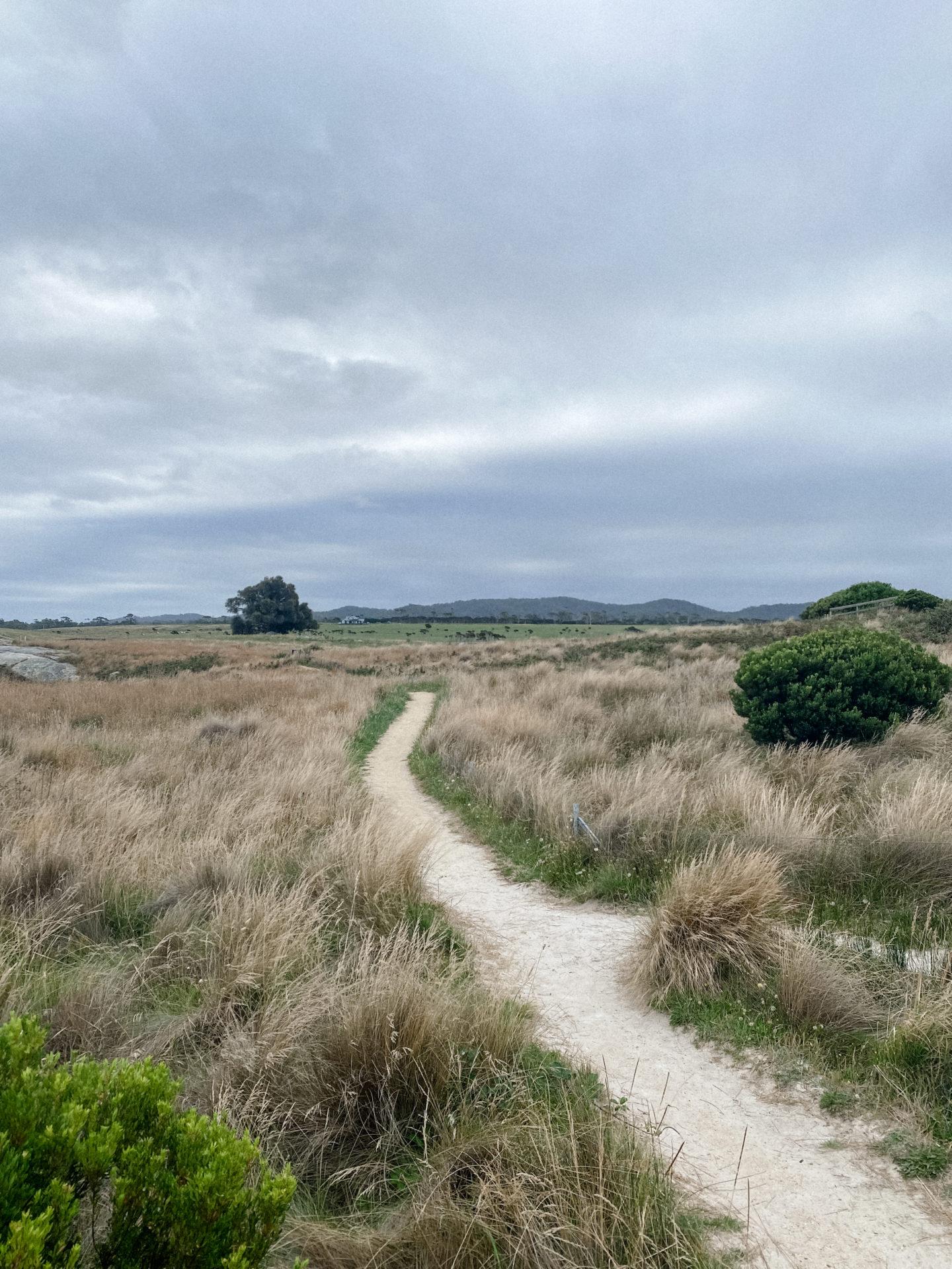 World of Wanderlust Tasmania