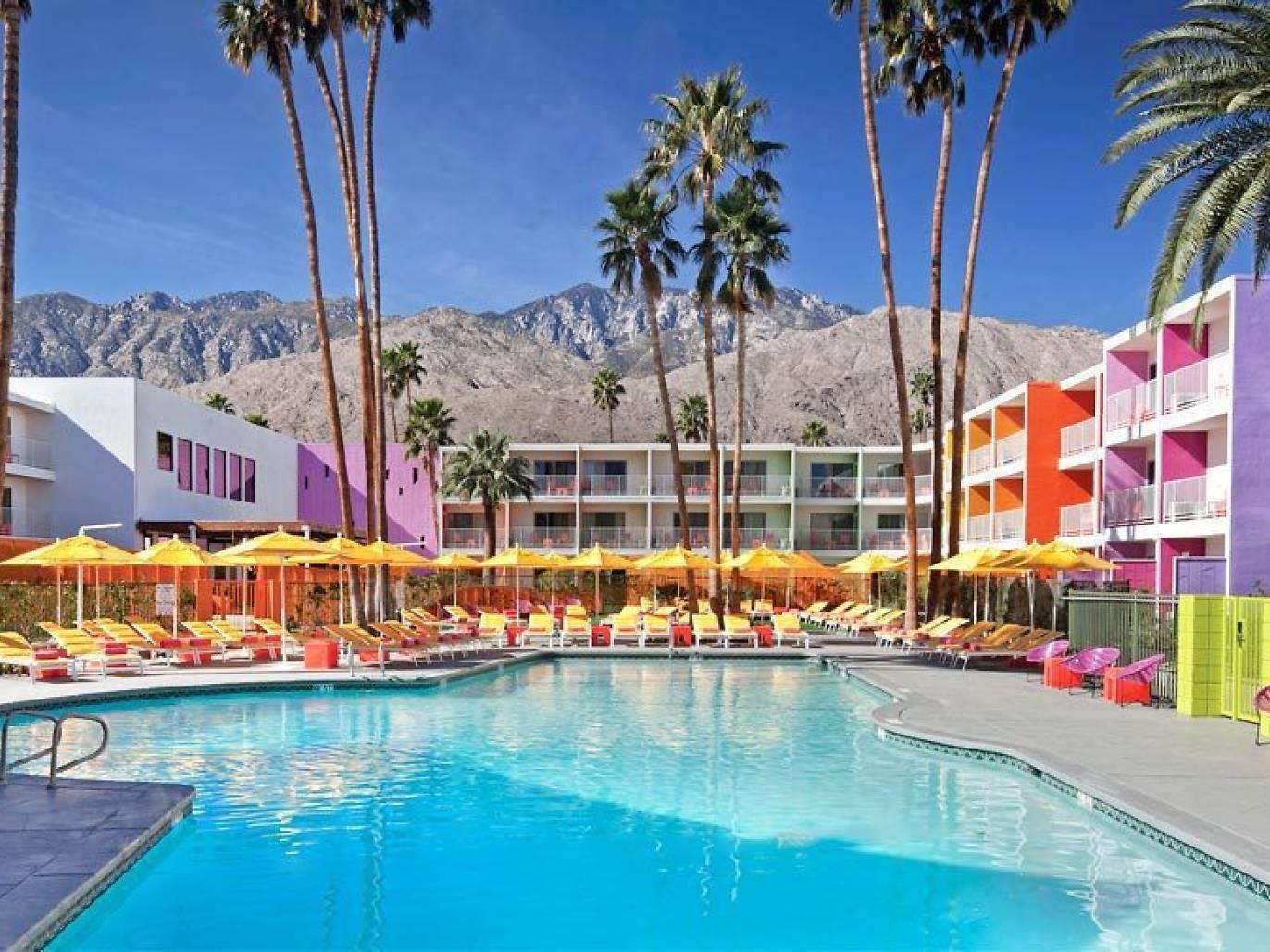Saguaro-Palm-Springs